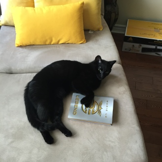 onyx-reading